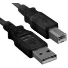 USB Printer Cable (Type A to Type B)
